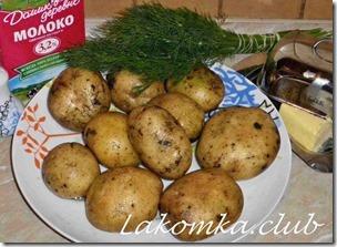 пюре картофельное с молоком и маслом (3)