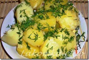 картофель вареный с укропом (2) (1)