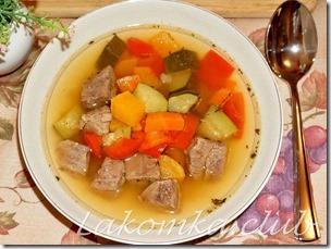 суп из говядины с овощами (1) — копия (1)
