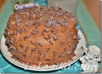 шоколадно-маковый торт (3)